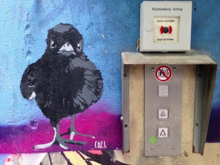 Streetart Juli 2017, Berlin, Krähe, schwarz, blau, pink