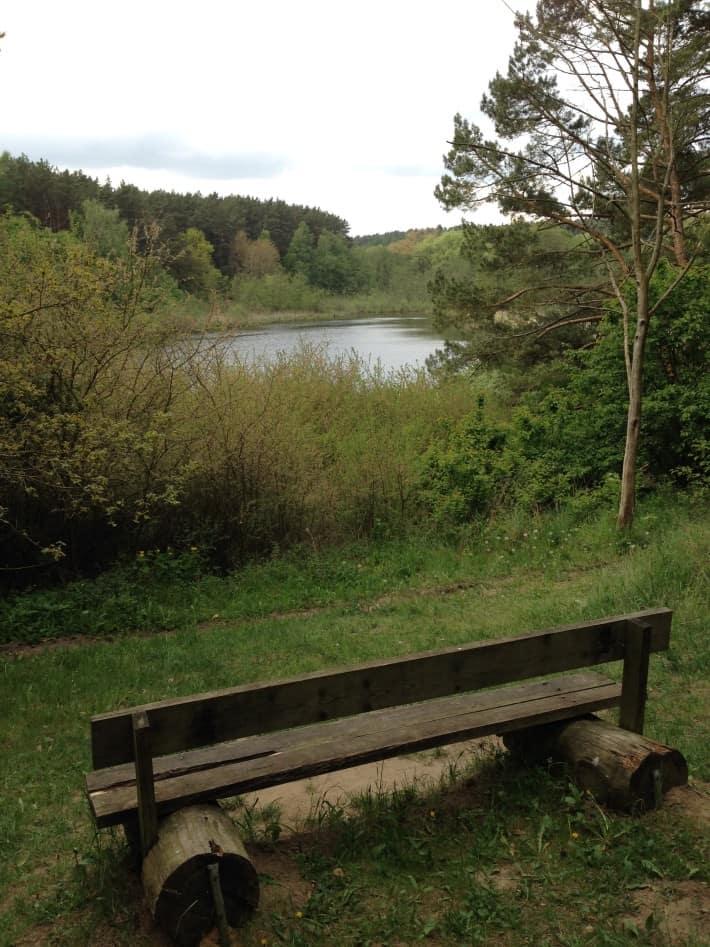 schöne Bank am Teich
