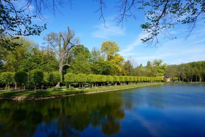 Schlosspark vom Schloss Wickrath in Mönchengladbach, Wasser, Bäume, blauer Himmel