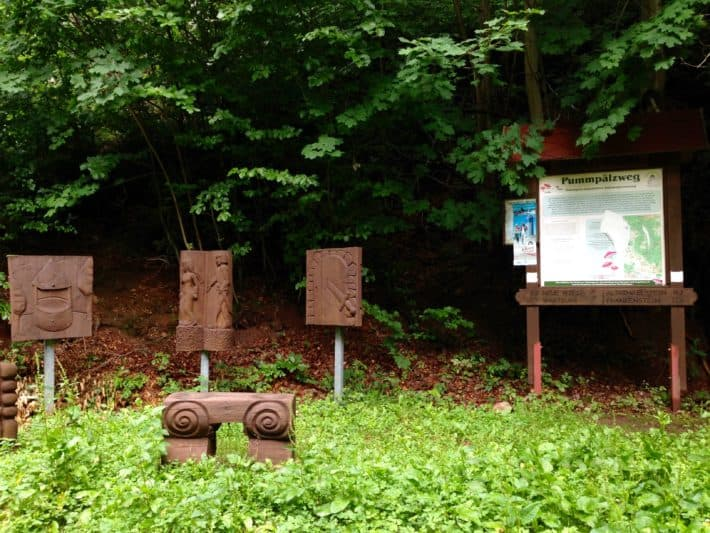 Pummpälzweg, Wald, Schautafel, Holzskulpturen