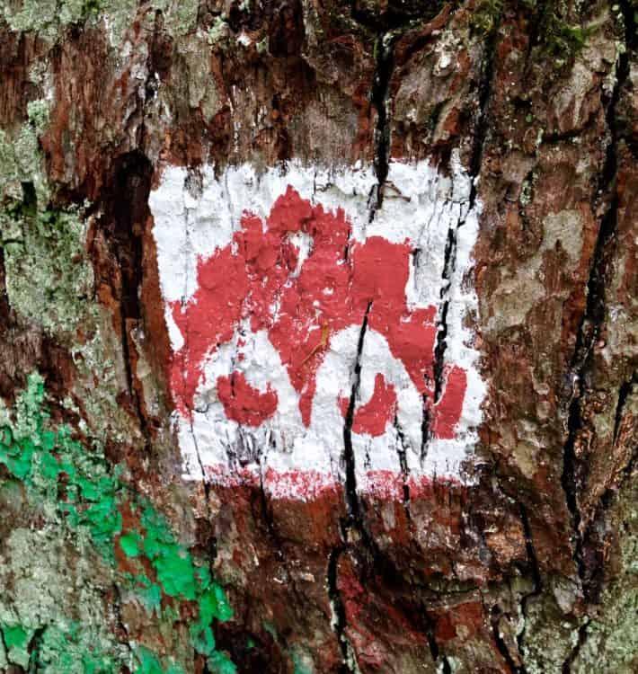 Pummpälzweg, Wegweiser, rot, weißer Koboldkopf