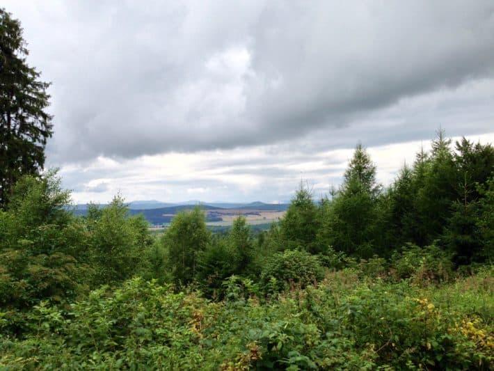 Pummpälzweg, Talblick, Natur, Wald, Wiese