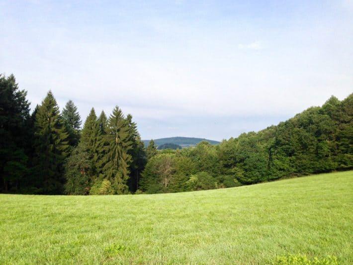 2. Etappe Hildegard von Bingen Pilgerwanderweg, Felder, Wiesen, Wälder, Berge, Natur