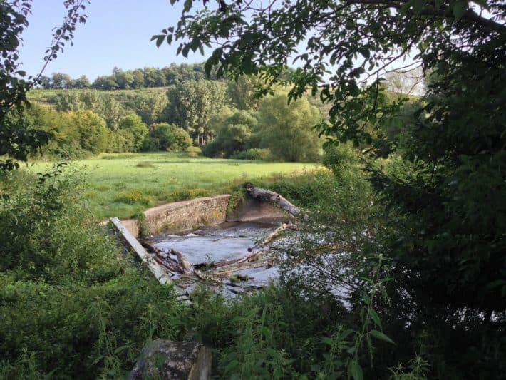 5. Etappe, Pilgerwanderweg, Natur, Fluss, Wiese, Baum, Blauer Himmel