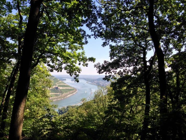 Hildegard von Bingen Pilgerwanderweg, 8. Etappe, Aussicht auf den Rhein