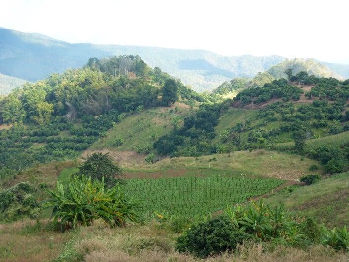 Landschaft Umgebung Chiang Mai