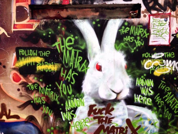 Streetart, BIngen am Rhein,weißer Hase, rote Augen, Matrix
