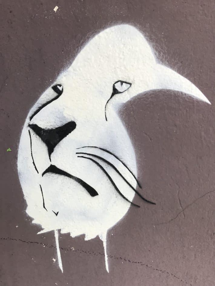 Rabe, Tiger, Streetart, Wallart, Berlin 2018
