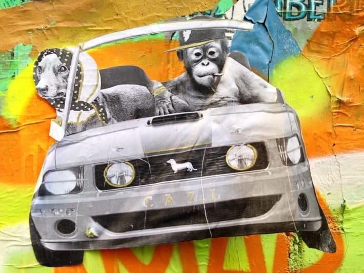 Streetart Berlin, Auto, Affen am Steuer