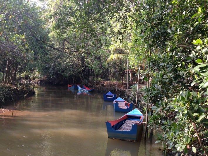 Little Amazonas Takuapa