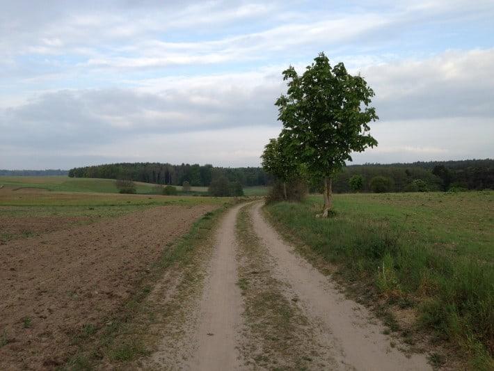 Feldweg bei Kemnitz