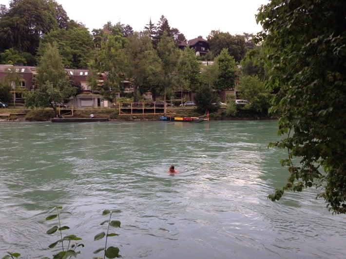 Schwimmer Aare