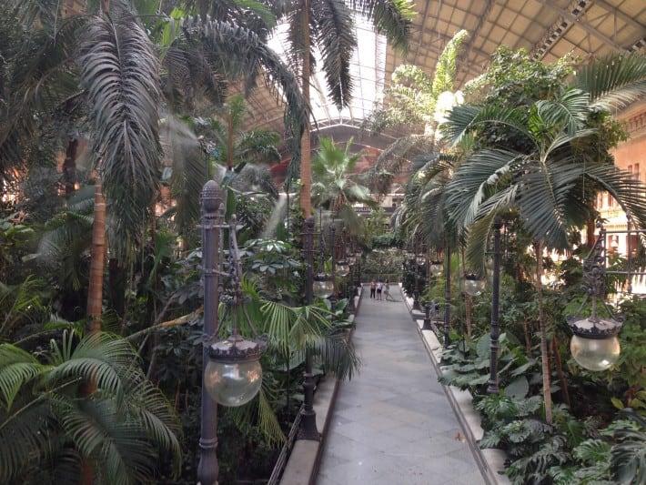 Palmengarten im Atocha Bahnhof Madrid