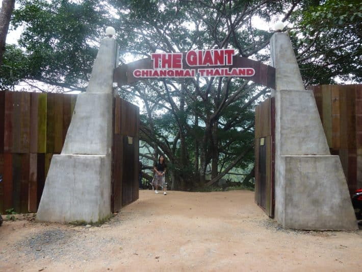 Chiang Mai: Ein reizvoller Ausflug zum The Giant
