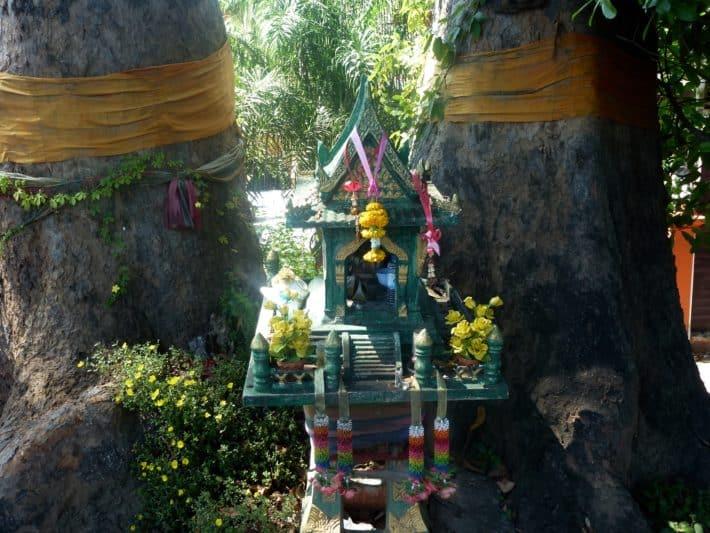 live-dabei-chiangmai-sukhothai-november-2016