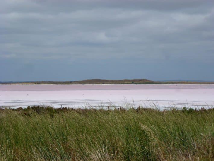 Pinker See entlang dem Princes Highway