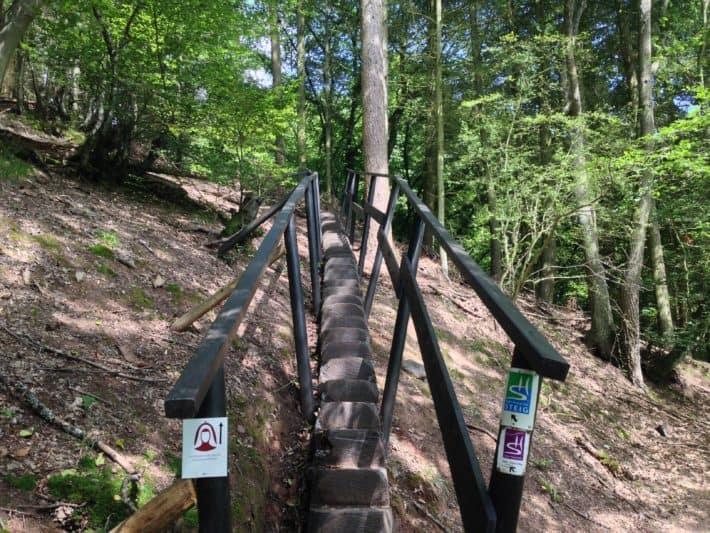 Hildegard von Bingen Pilgerwanderweg, 1. Etappe, Treppe mit Geländer mitten im Wald