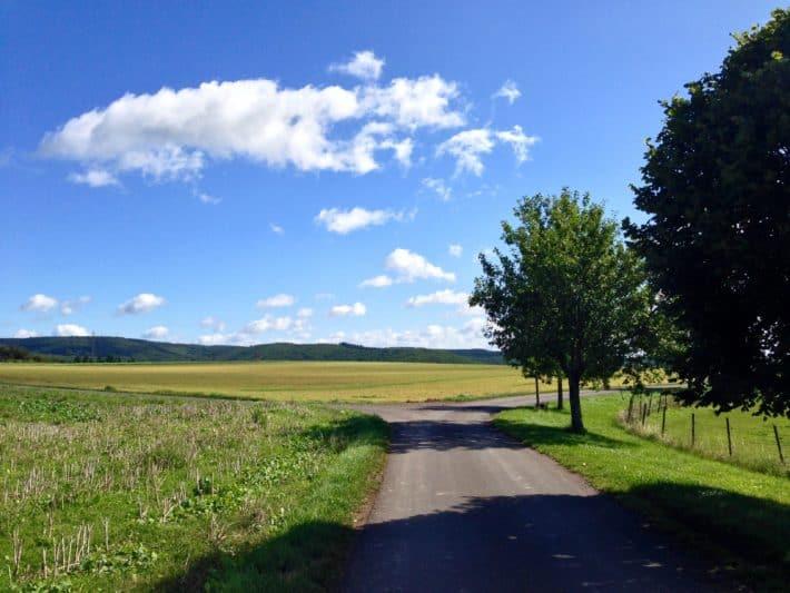 Weg nach Disibodenberg, 4. Etappe Pilgerwanderweg. Blauer Himmel, Landstraße, Felder, Natur, Bäume