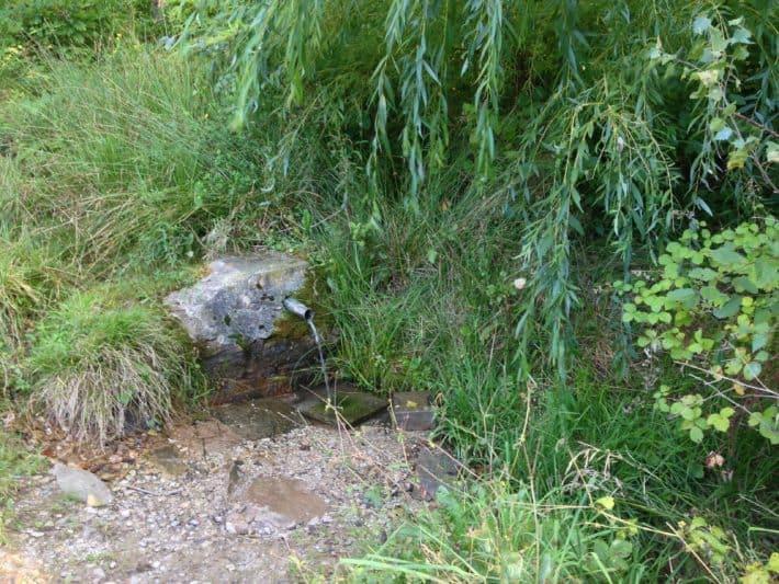 Quelle auf der 8. Etappe vom Oilgerwanderweg, grün, Bäume, Sträucher, Wasser