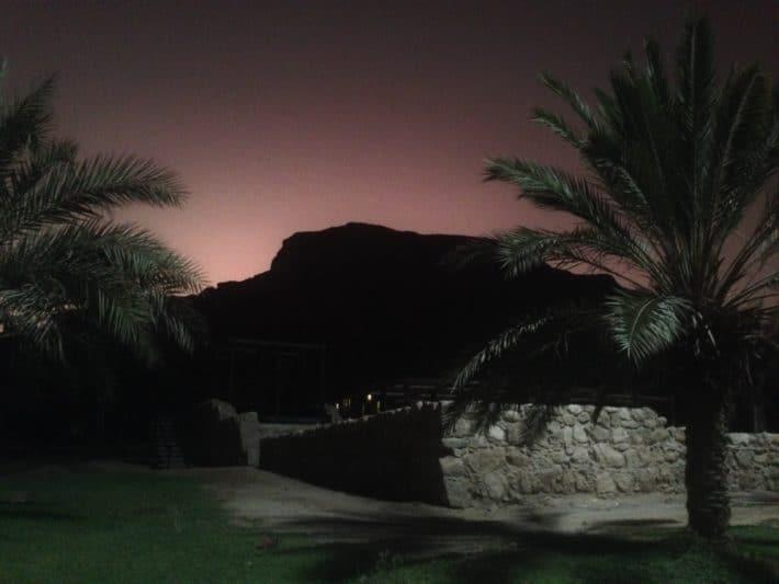 Totes Meer, Sonnenuntergang, Palme, BEricht über Schuppenflechte