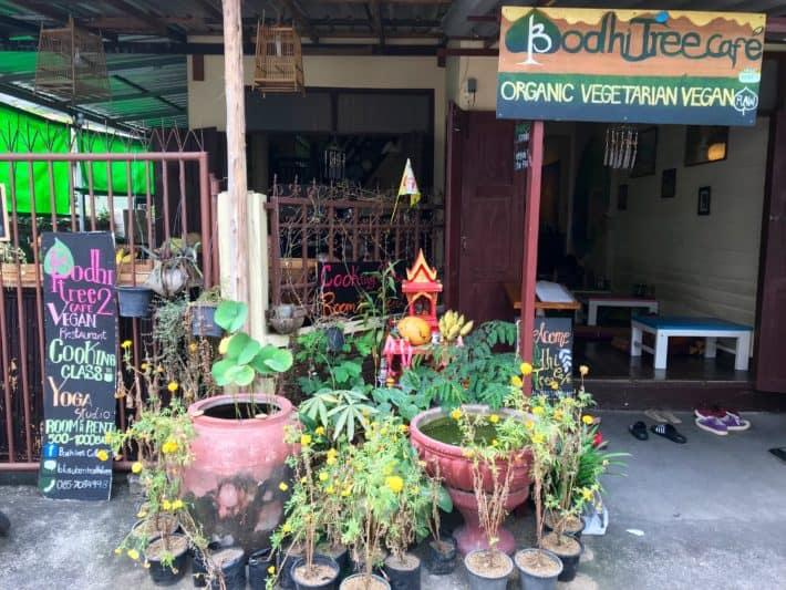 Lecker vegetarisch und vegan Essen, Restaurant Bodhi Tree Cafe 2 von außen, Chiang Mai, Pflanzen, bunt