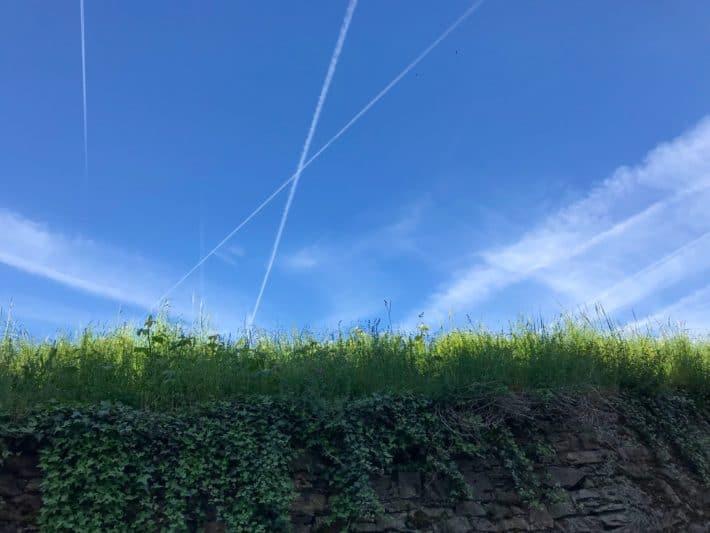 Rüdesheimer Hildegardweg, Ringmauer, Rüdesheim, Blauer Himmel, alte Mauer