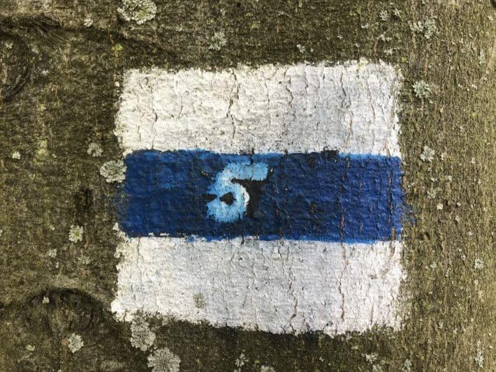 Wegweiser, Nr. 5 der 20 Grünen Wege