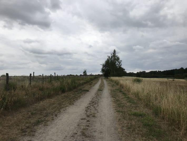 Feldweg, 2. Etappe der Via Imperii