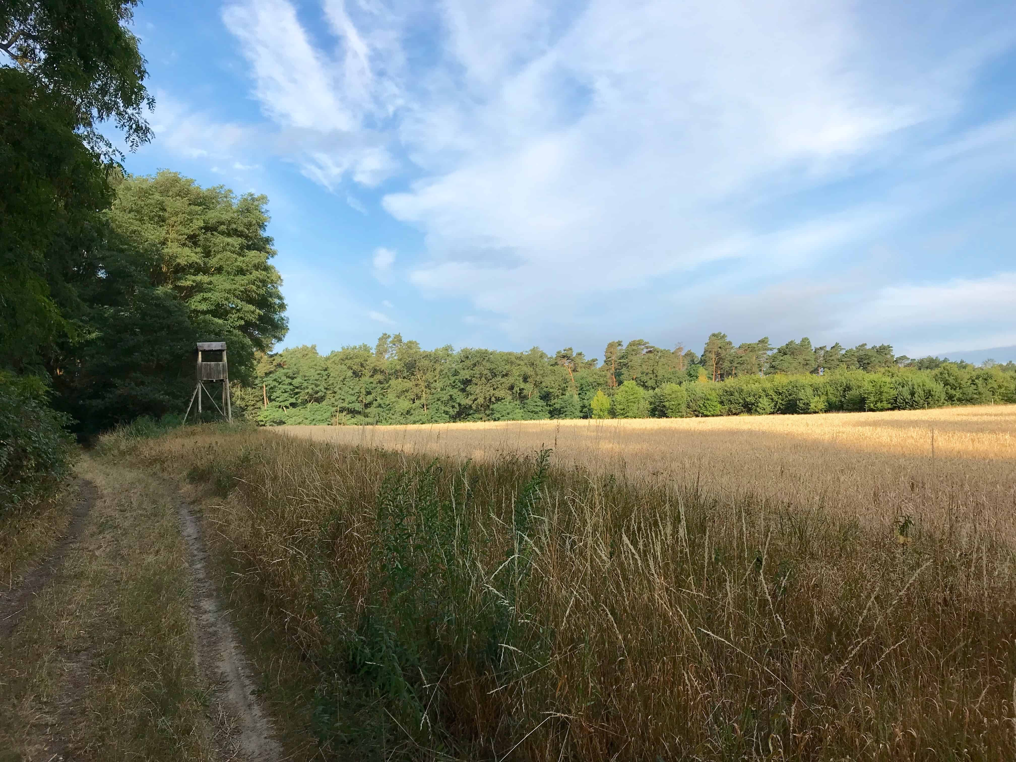 Meine 3. Etappe auf der Via Imperii: Saarmund - Beelitz - Misses Backpack