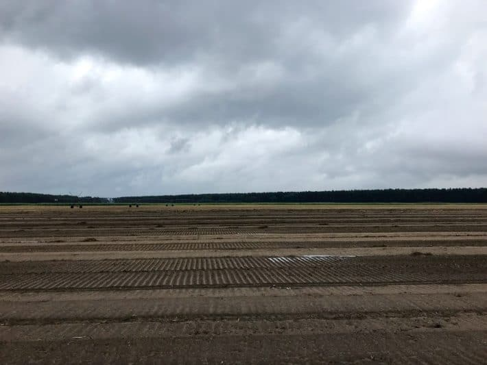 Feld, grauer Himmel, Regenwetter, 4. Etappe der Via Imperii