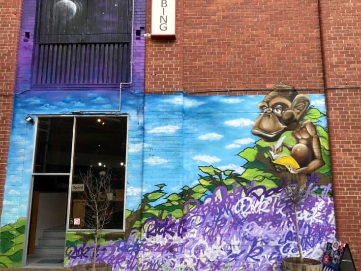 Streetart, Urbanart, Hobart, bunt, colourful, Affe, Monkey,