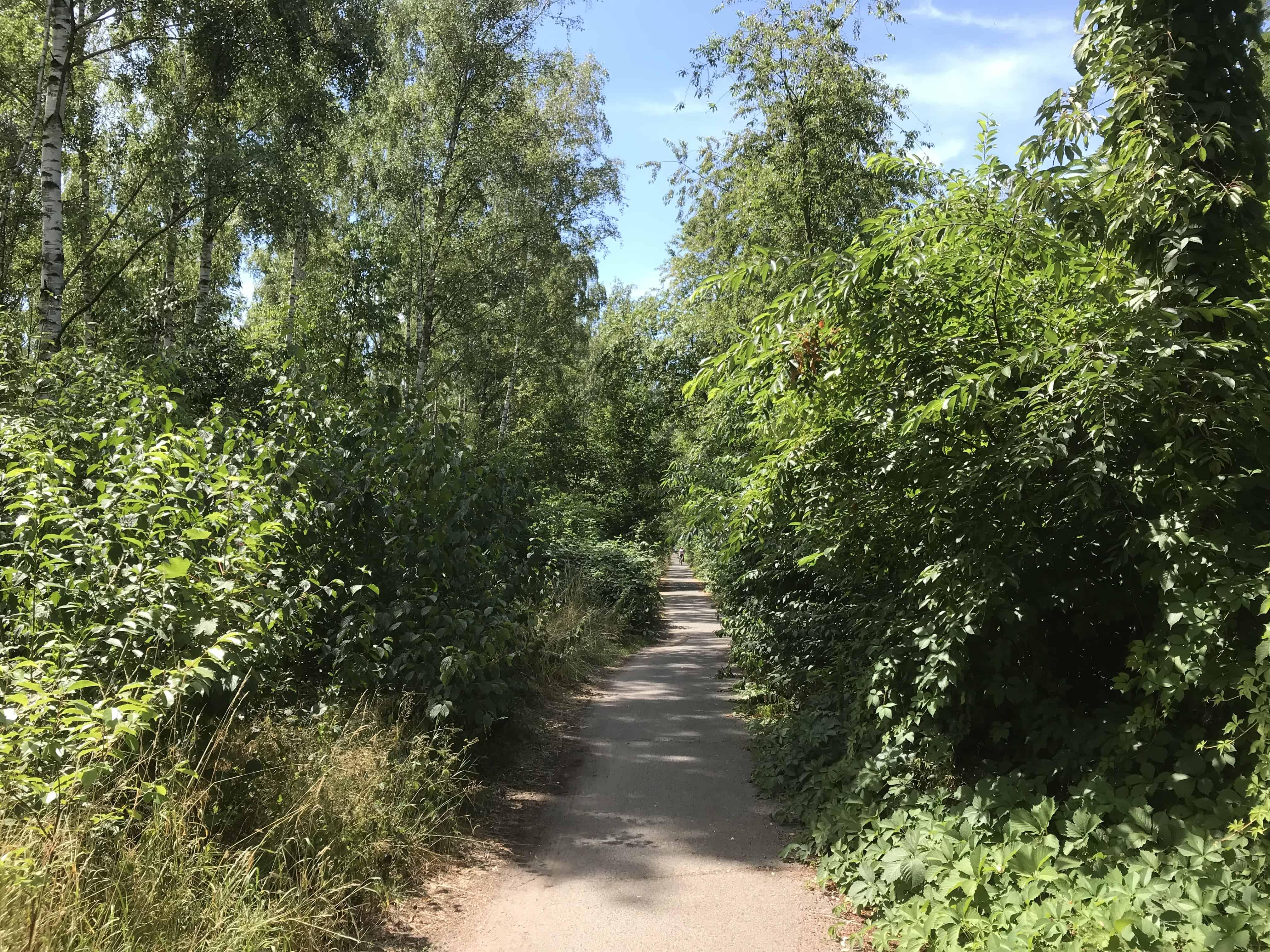 Wandrweg, grün, Natur, 1 Etappe der Via Imperii Berlin - Teltow